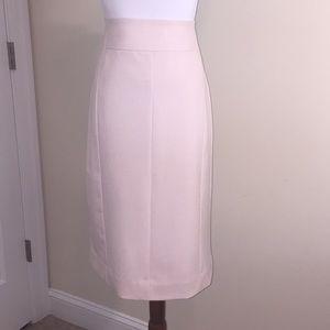 Worthington Blush Pink Skirt